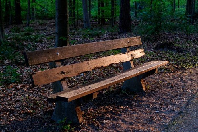 les-priroda-oddych-chodnik-drevena-lavicka-ochranny-nater-stromy-lak