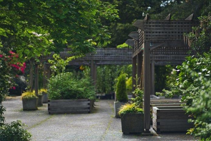 zahrada-pristresok-drevena-pergola-kvety-stromy-moderny-dizajn