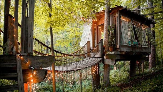svetielka-most-okna-priroda-stromy-dreveny-dom-harmonia-zivotny-styl
