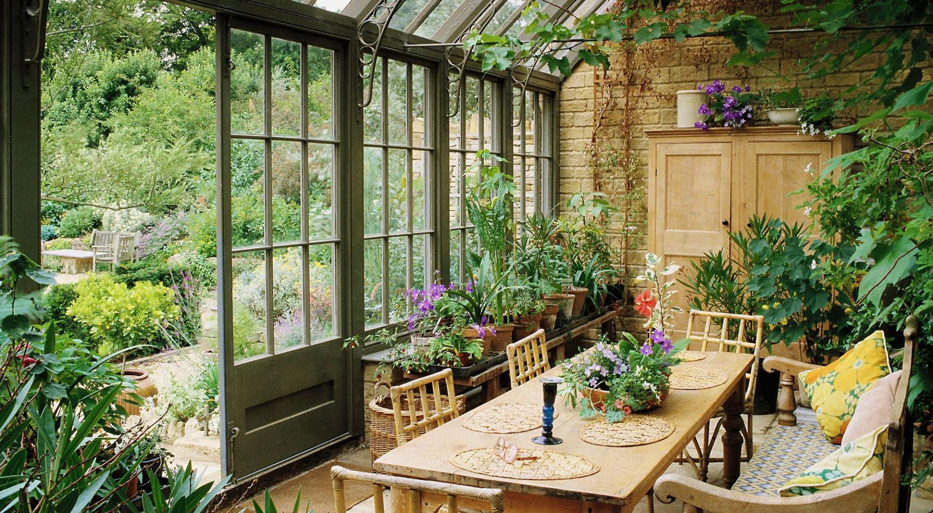 zahrada-drevo-rastliny-kvetiny-nabytok-okna-stol-stolicky-stolovanie