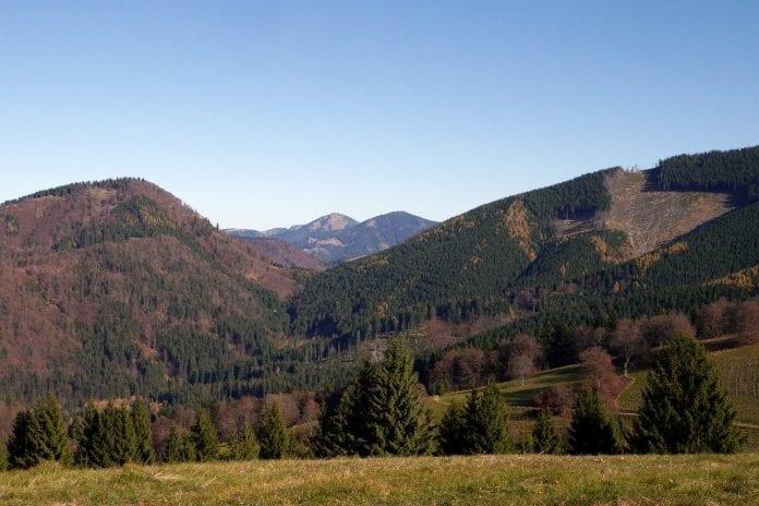 hory-lesy-kopce-stromy-luky-trava-priroda-obloha