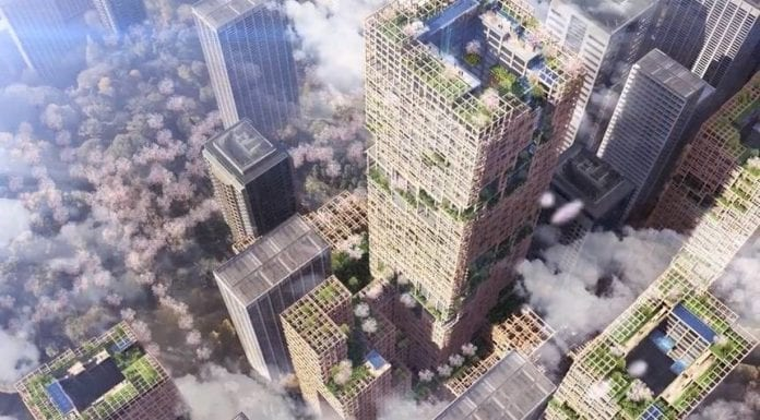 drevo-budova-stavba-mrakodrap-buducnost