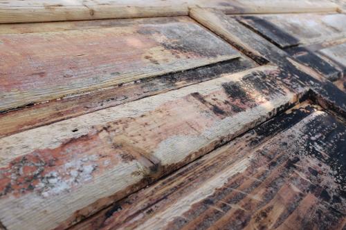 znicene-dvere-praskliny-osuchany-nater-renovacia