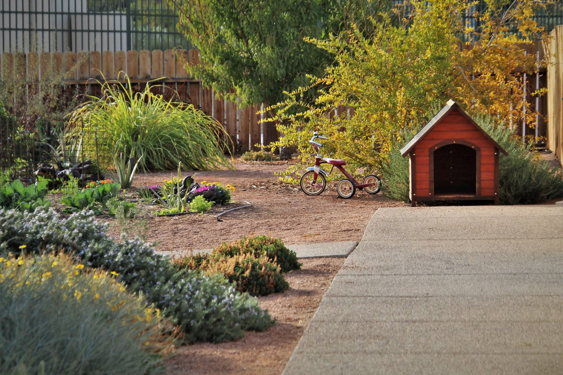 zahrada-umiestnenie-budy-trojkolka-kvety-stromy-kriky-chodnik