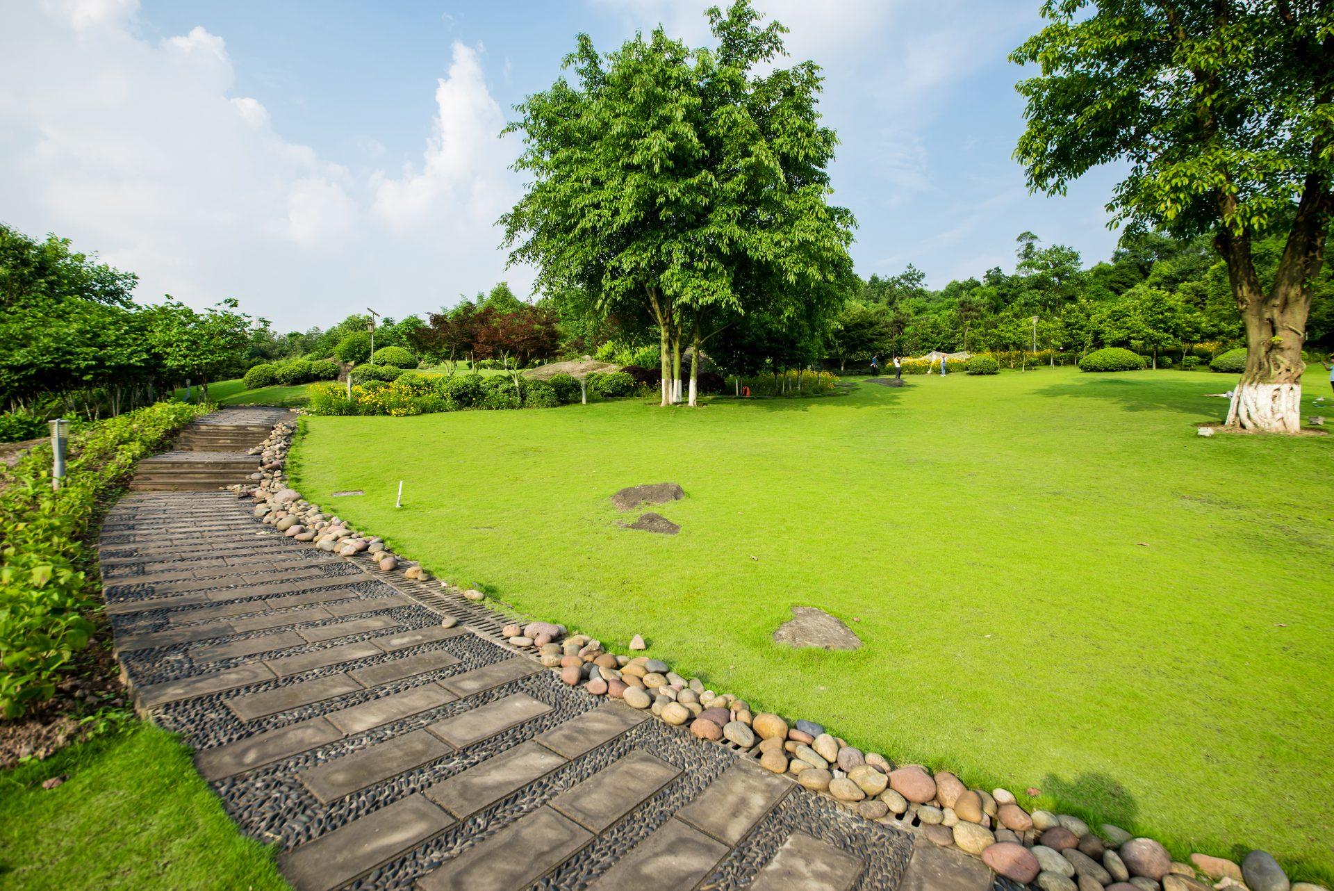 travnik-stromy-chodnicek-kamene-priroda-zahrada