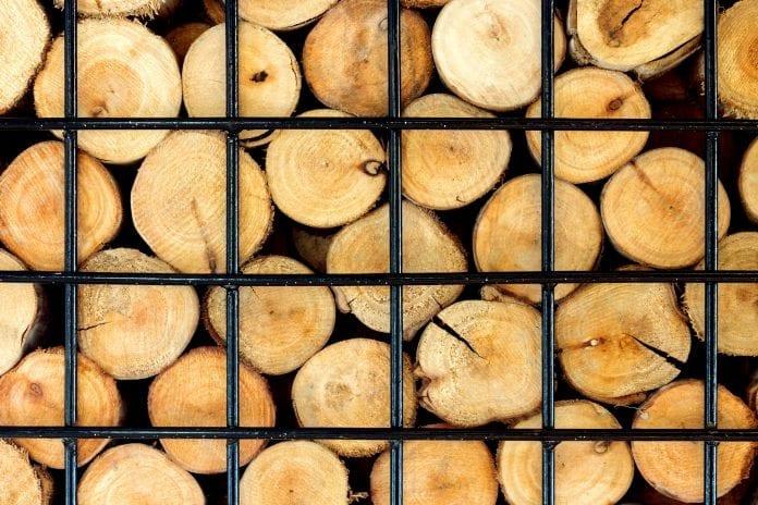 praskanie dreva