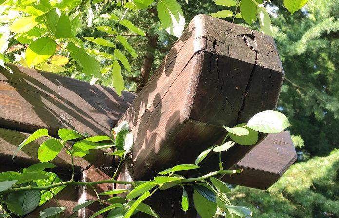 popraskané drevo s narušenou štruktúrou