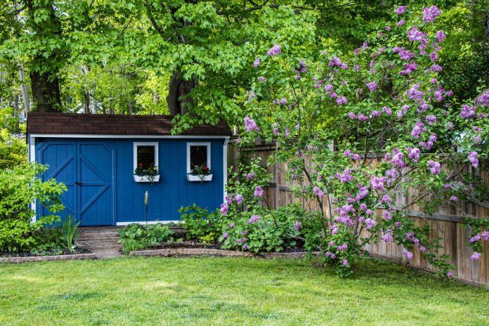 modrá chatka postavená na pevných základoch